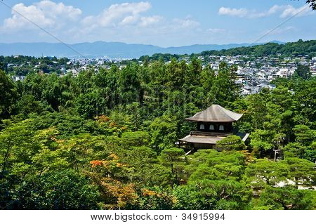 Japanese Temple and Forest