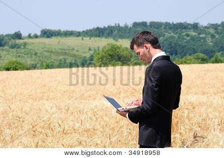 Business man with laptop in wheat