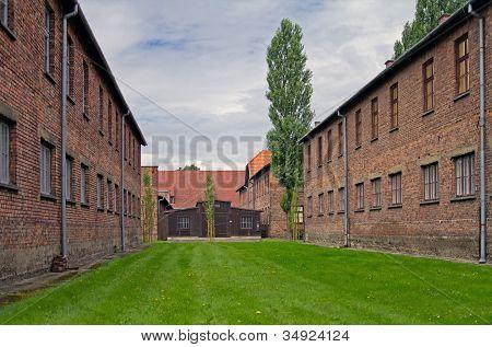 Block of houses in Auschwitz
