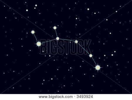 Vector Illustration Of Ursa Minor