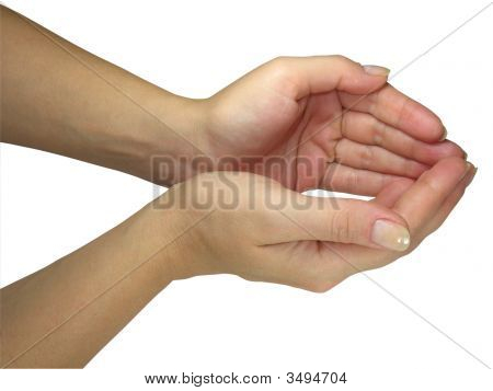Human Lady Hands Holding Your Object Isolated Over White