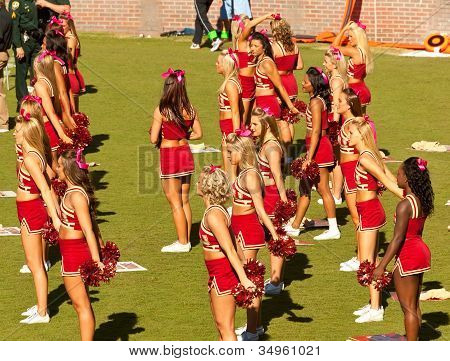 Florida State Cheerleaders