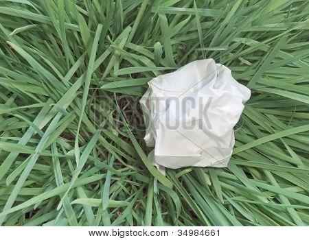 paper dumped on grass