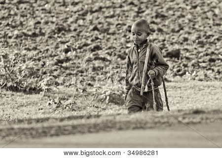 A Young Shepherd Comes Back From The Fields