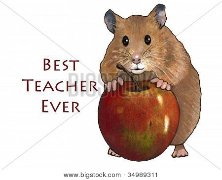Hamster With Apple: Best Teacher Ever