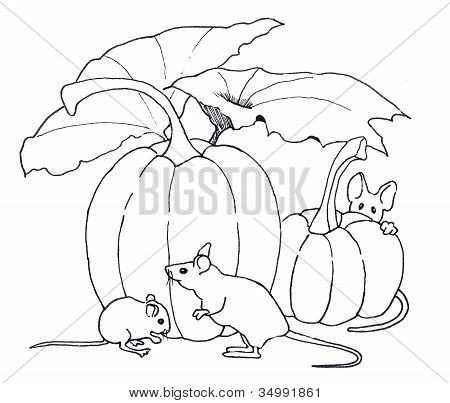 Line Drawing of Mice With Pumpkins