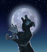 stock photo of wolfman  - The result of a genetics experiment gone wrong a lonely mutant wolf creature howls in moonlight - JPG