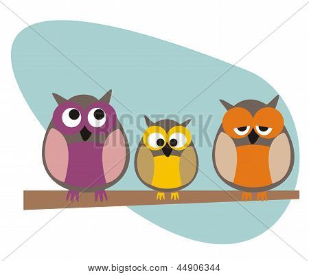 Funny, staring owls family sitting on branch on a sunny day vector illustration isolated on white