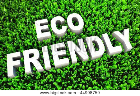 Eco Friendly Concept on Green Grass and Text