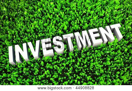 Growing Investment and Wise Growth of Wealth