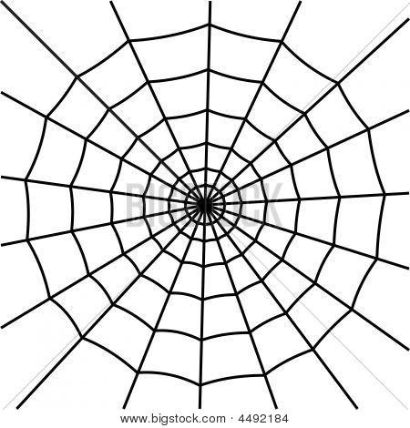 Web Spider Vector Spider's Web Silhouette