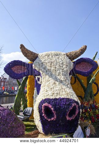 Haarlem, The Netherlands - April 21 2013: Dutch Cow With Flowers At Flower Parade On April 21 2013 I