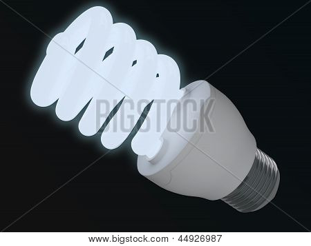 Bulb Of Illumination