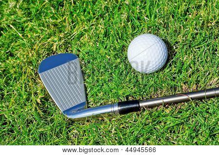 Golf Stick Ball Closeup On The Grass.