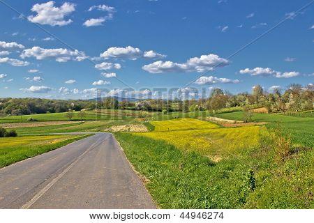 Prigorje region spring lanscape road