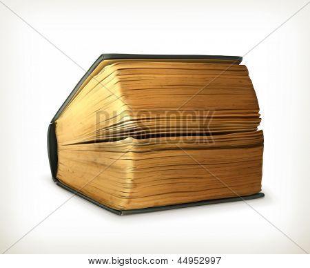 Ancient book, vector