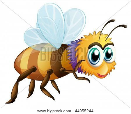 Illustration of a big fat bee on a white background