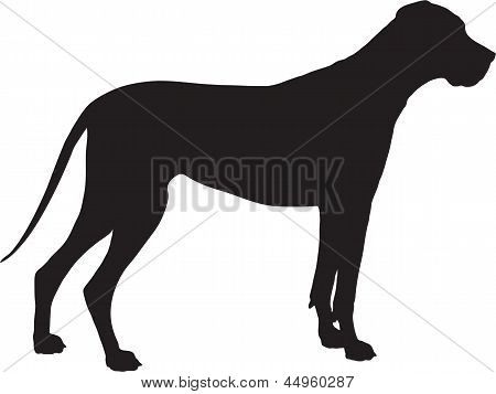 Great Dane Silhouette