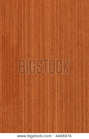 Meranti (wood Texture)