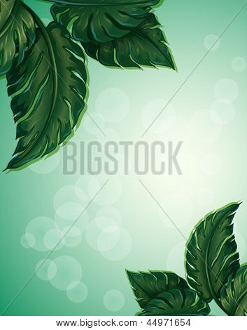 Illustration of a special paper with big pointed leaves