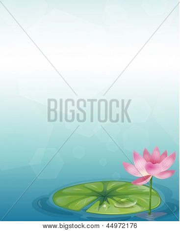Illustration of a stationery with a waterlily and a pink flower
