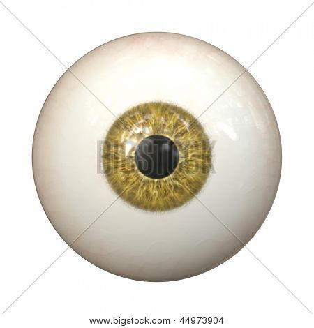 An image of a nice brown eye texture