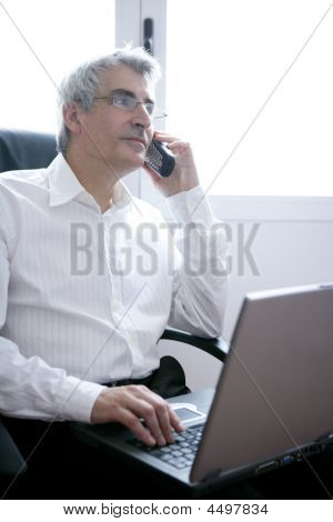 Businessman Working Laptop, Senior Gray Hair