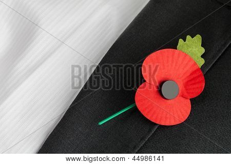 Poppy Appeal, Remembrance Sunday - Poppy On Jacket Lapel.