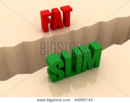 Two words FAT and SLIM split on sides separation crack.