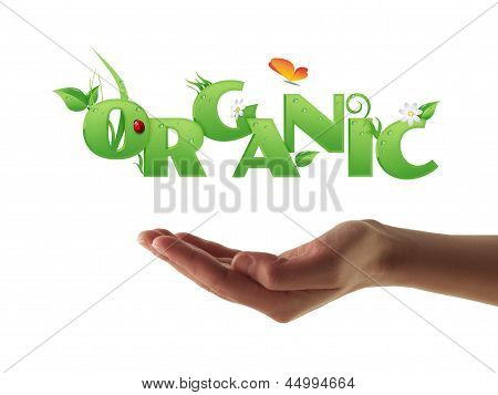 Hand Holding Organic Text