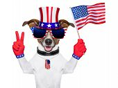 stock photo of uncle  - american dog with peace fingers waving american flag - JPG