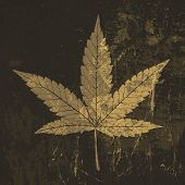stock photo of rasta  - Cannabis leaf grunge icon - JPG