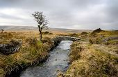 Winter On Dartmoor