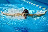 Постер, плакат: Пловец в бассейн в стиле Баттерфляй действий