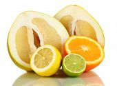 picture of pamelo  - Lots ripe citrus isolated on white - JPG