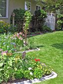 Curving Perennial Bed