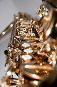 picture of saxy  - a golden shiny saxophone with three white buttons