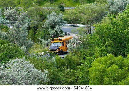 School Bus In Green