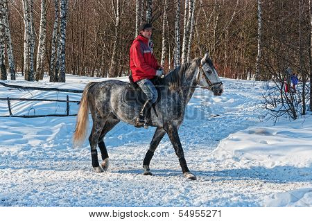 The equestrian on a gray horse.