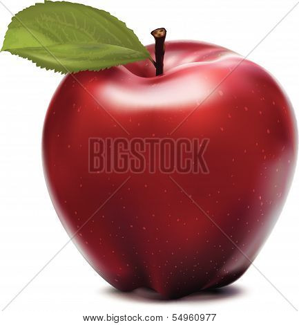 Apple red with green leaf. Vector illustration
