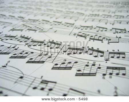 Blatt, Musik