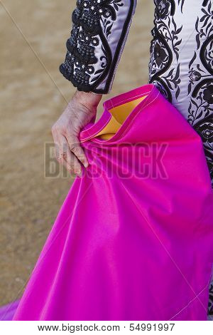 Bullfighter with the Cape before the Bullfight
