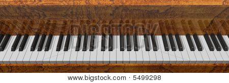 The Piano02