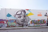 Art Murals at Wynwood