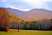 stock photo of cade  - Scenic drive in Smoky Mountain National Park