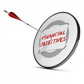 Achieving Financial Objectives Concept
