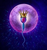 stock photo of sperm cell  - Winning sperm human Fertility concept with a close up of microscopic sperm or spermatozoa cell wearing a gold crown swimming towards a female egg cell to fertilize and create a successful pregnancy as a medical reproduction symbol - JPG