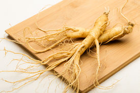 picture of ginseng  - Ginseng  - JPG