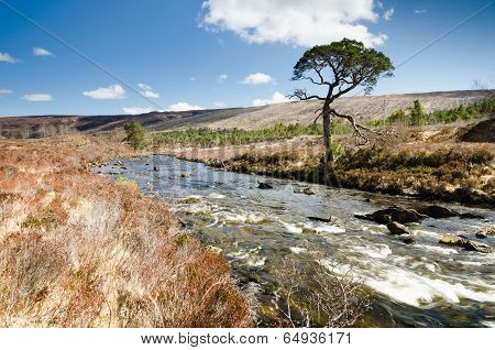A Ghairbhe River Flows Towards Kinlochewe