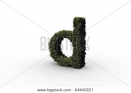 Lower case letter d made of leaves on white background